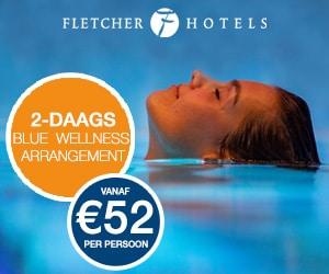 HFletcher Bleu Wellness banner